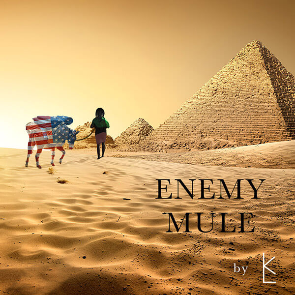 Enemy Mule Album Art